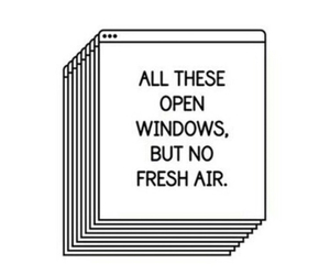 grunge, quotes, and windows image