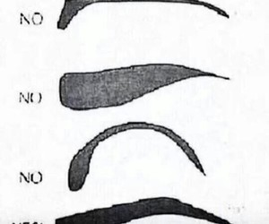 eyebrows, learn, and makeup image