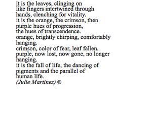 poem and tumblr image