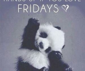 friday, panda, and party image