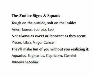 zodiac, gemini, and virgo image