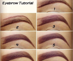 diy, eyebrow, and makeup image