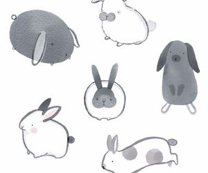 animal, bunny, and draw image