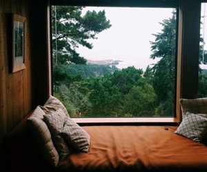 nature, green, and bed image