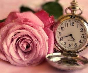clock, clocks, and flower image