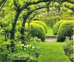 garden and home decor image