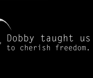 harry potter, dobby, and freedom image