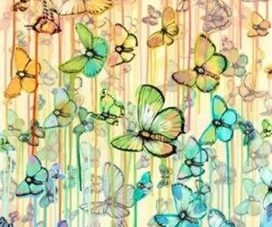 background and butterfly image