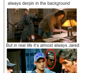 boys, Jensen Ackles, and funny image