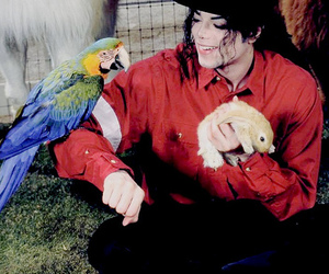 michael jackson and neverland image