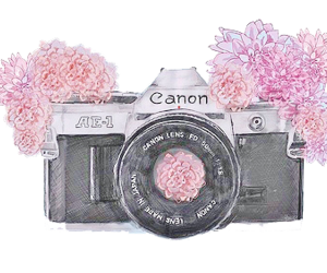 canon, camera, and flowers image