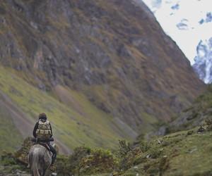 autumn, explore, and horse image