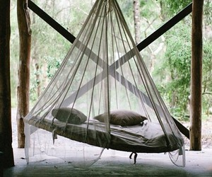 bed and hammock image