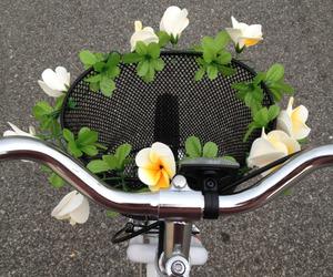 flowers, bike, and tumblr image