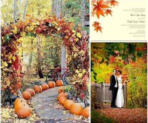fall, ideas, and maple leaves image