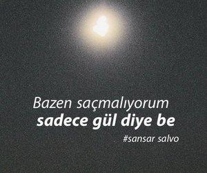 gul image
