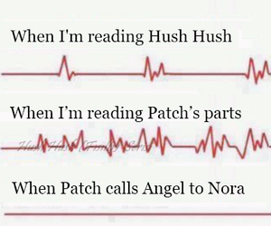 patch cipriano, nora grey, and hush hush series image
