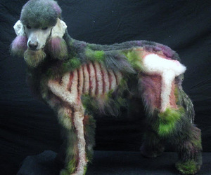 dog, poodle, and zombie image
