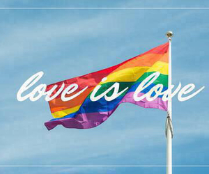 love is love, gay, and equality image