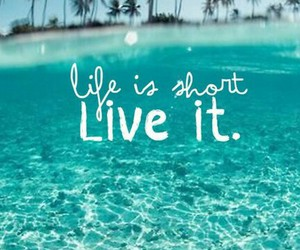 life, summer, and live image