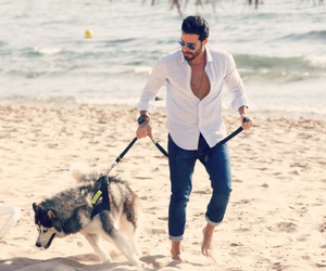 arab, dog, and Hot image