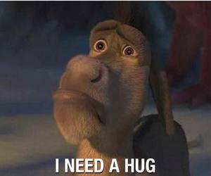 hug, shrek, and donkey image