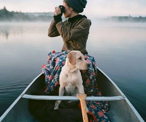 dog, indie, and adventure image
