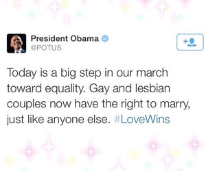 gay, gay marriage, and lesbian image