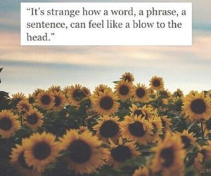 quotes and sunflowers image