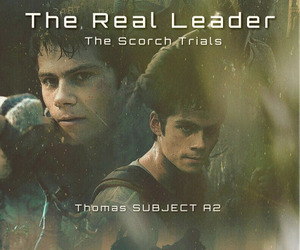thomas, the maze runner, and dylan o'brien image