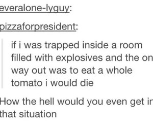 funny, tumblr, and tomato image