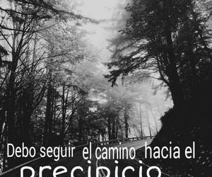 camino, morir, and suicidio image