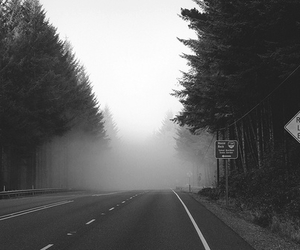 road and fog image