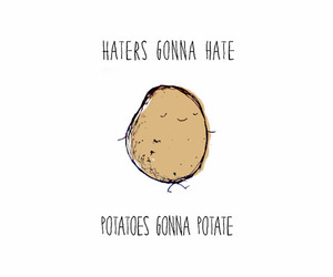 potato, funny, and haters image
