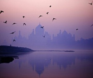 agra and india image