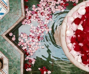 flowers, rose, and morocco image