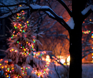 christmas, lights, and night image