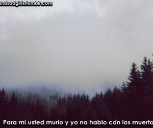 tumblr, frases en español, and quotes in spanish image