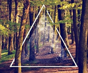 forest, hipster, and triangle image