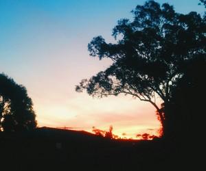 australia, beautiful, and colourful image