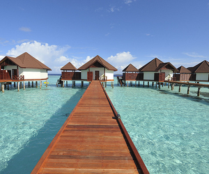 summer, beach, and bora bora image