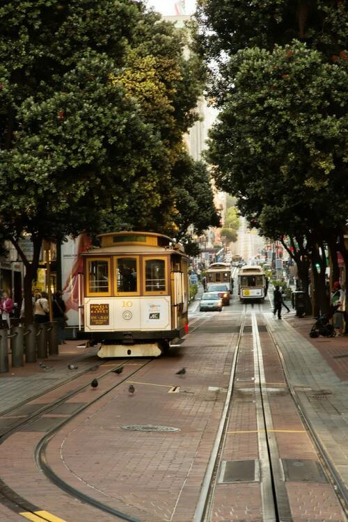 city, travel, and tree image