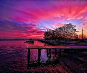 pink, beautiful, and pretty image