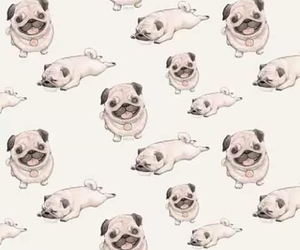 pug, dog, and wallpaper image