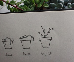 grunge, plants, and quotes image