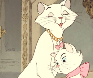 animals, bow, and aristocats image