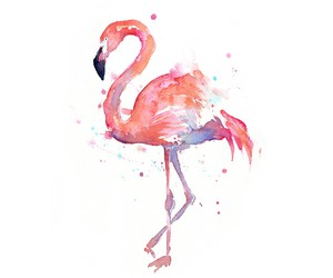 animal, pink, and watercolor image