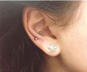 earring, turtle, and piercing image
