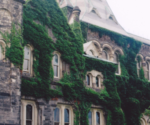 house, nature, and architecture image