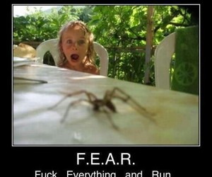 fear, lol, and funny image
